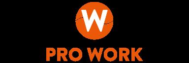 logo-pw-h